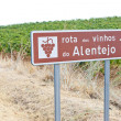 Vineyars and wine route in Alentejo — Stock Photo
