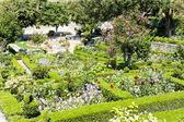 Garden in Marvao — Stock Photo