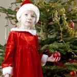 Santa Claus by Christmas tree — Stock Photo