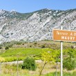 Vineyars, Languedoc-Roussillon, France - Stock Photo