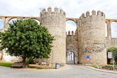Porta de Beja in Serpa, Alentejo, Portugal — Stock Photo