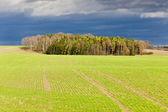 Autumn landscape, Czech Republic — Stock Photo