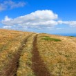 Path on mountain field — Stock Photo