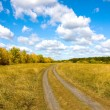 Countryside road in autumn steppe — Stock Photo