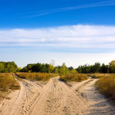 Roads in steppe — Stock Photo
