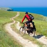 Biker on meadow — Stock Photo