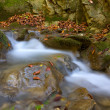 Autumn stream — Stock Photo