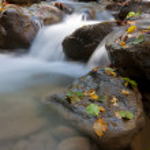 Mountain brook — Stock Photo #7573841