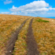 Path on mountain field in nice day — Stock Photo