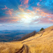 Path on mountain meadow — Stock Photo
