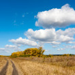 Path on autumn field — Stock Photo