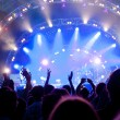 Crowd of fans at a concert — Stock Photo #7131708