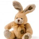 Rabbit toy romatic gift — Stock Photo