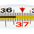 Thermometer — Stock Photo #7609521