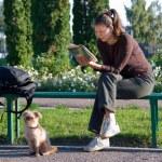 student lezen van een boek — Stockfoto