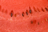 Pulp of watermelon — Stock Photo