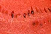 Pulp of watermelon — Stock Photo