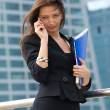 Business woman — Stock Photo #7610641