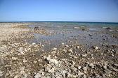Seashore - Lake Huron — Stockfoto