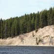 Stockfoto: Yellowstone River