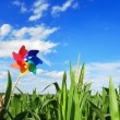 Pinwheel at Corn Field — Stock Photo
