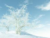 белая зима — Стоковое фото