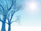 Muhteşem kış manzarası — Stok fotoğraf