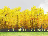 Autumn scenery — Stockfoto