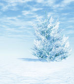 White winter — Stockfoto