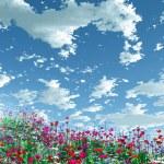 flores belas — Foto Stock