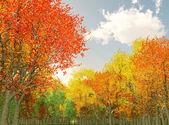 秋の風景の素晴らしい — ストック写真