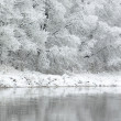 White winter — Stock Photo #7299291