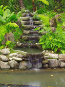 Waterfall and plants — Stock Photo