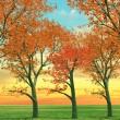 Beautiful autumn trees - Stock Photo
