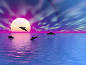 Sunset with dolphins — Stock Photo