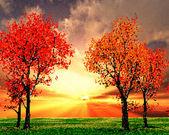 Красивый Осенний пейзаж Иллюстрация — Cтоковый вектор