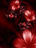 Beautiful flowers — 图库照片