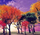 Beautiful autumn landscape — Stockfoto