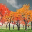 Stock Photo: Beautiful autumn