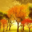 Beautiful autumn landscape — Stock Photo #7364987