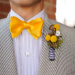 Stock Photo: Seersucker Suit with yellow bowtie