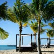 Stock Photo: Beach CabanBed And Palm Trees
