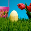 Stock Photo: Yellow Easter egg and basket in grass