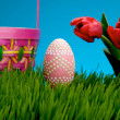 Pink Easter egg and basket — Stock Photo