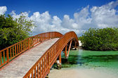 Arched Wooden Bridge — Stock Photo