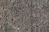 Exposed aggregate concrete — Foto de Stock