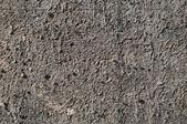 暴露骨料混凝土 — 图库照片