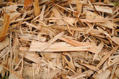 Woodchips — Stockfoto