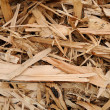 Woodchips — Stock Photo