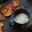 Stock Photo: Oatmeal and Autumn Camping